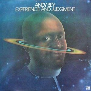 Andy Bay - Experience & Judgement lp front